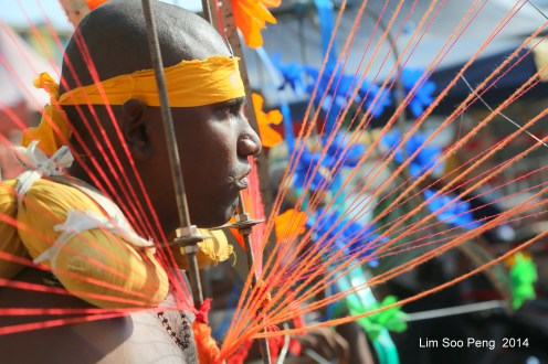 Thaipusam PgHill 5DMkIII 657-001