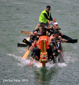 Dragon Boat 2015 379