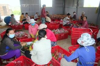 1-Vietnam Photo Trip Part 1 70D 1217