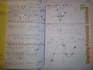 Polynomials Dividing By Zero