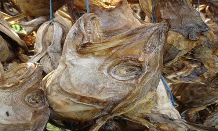 We are top Distributors of Quality Dry Stockfish Available Online. We Supply both Dried Salted Cod Wholesale   Dry Stock Fish From Norway