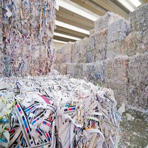 Sorted Office Paper (SOP) free from unbleached fibre. Legit supplier of quality Recycled paper grades, White Tissue Paper Scrap, SOP 37 Scrap.