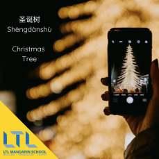 Christmas Tree - Chinese Christmas Vocab
