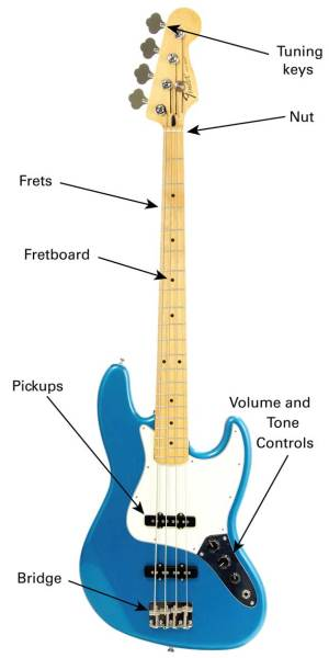 The Bass Guitar  Learn To Play Music Blog