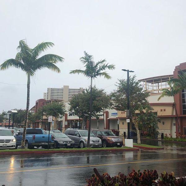 おはようハワイ まんまと雨天