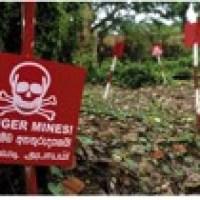 Über 150.000 Landminen in Sri Lanka entschärft