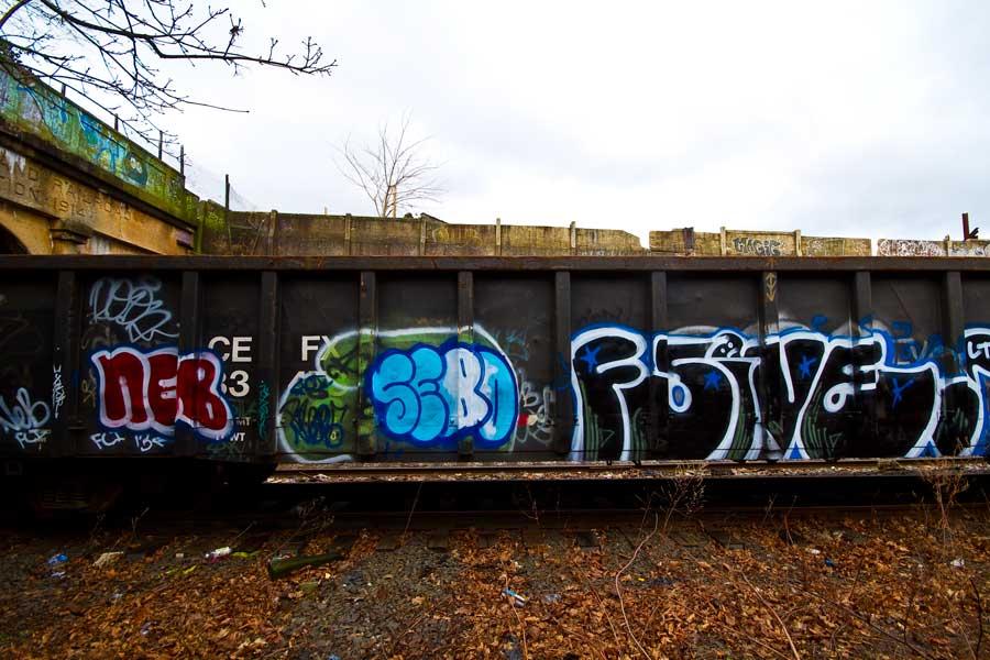 F5, Seeeeeebo