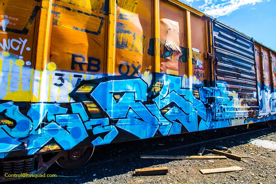 IMG_8978