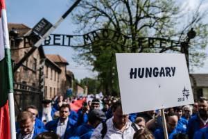 Az Élet Menete Auschwitz-Birkenauban