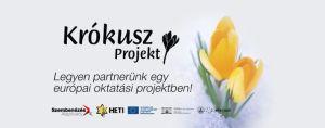 Krókusz Projekt – Virággal az erőszak ellen!