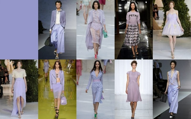 Violet tulip FCR Spring 2014 Pantone Collections