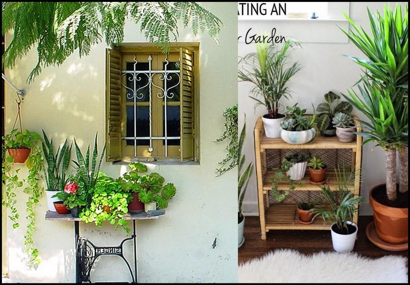 jardim no canto - FAÇA SEU JARDIM EM QUALQUER CANTO