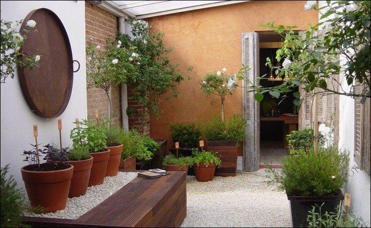 jardim no quintal - FAÇA SEU JARDIM EM QUALQUER CANTO
