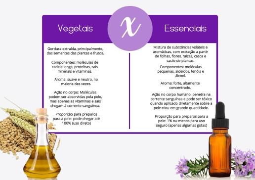 oleos essenciais oleos vegetais 1024x725 - ÓLEOS ESSENCIAIS:TUDO O QUE PRECISA SABER SOBRE ELES