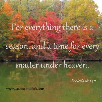 every_season