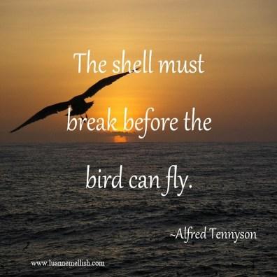 shell_must_break