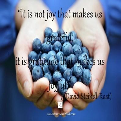 gratitude makes joy