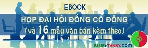 ebook dai hoi dong co dong