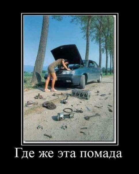 Юмор для женщин и девушек. Подборка смешных картинок и фото lublusebya-lublusebya-16331212052019-16 картинка lublusebya-16331212052019-16