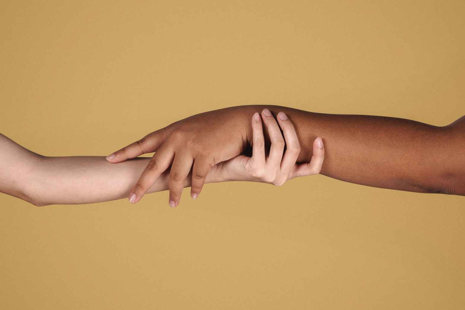 diverse women showing respect to each other while holding hands