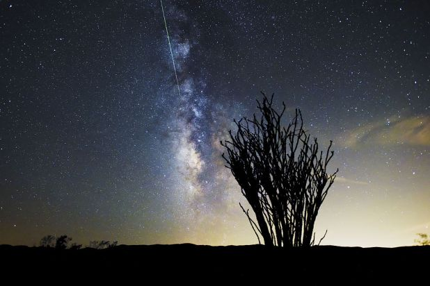 Perseid_Meteor_Shower_over_the_Ocotillo_Patch