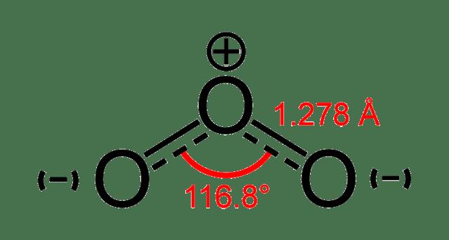 Ozone-1,3-dipole