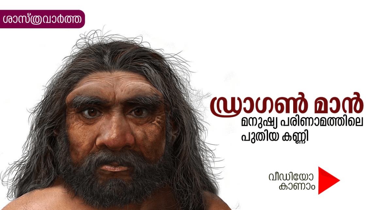 ഡ്രാഗൺ മാൻ – മനുഷ്യ പരിണാമത്തിലെ പുതിയ കണ്ണി