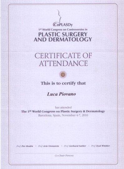 plastic-surgery-2010