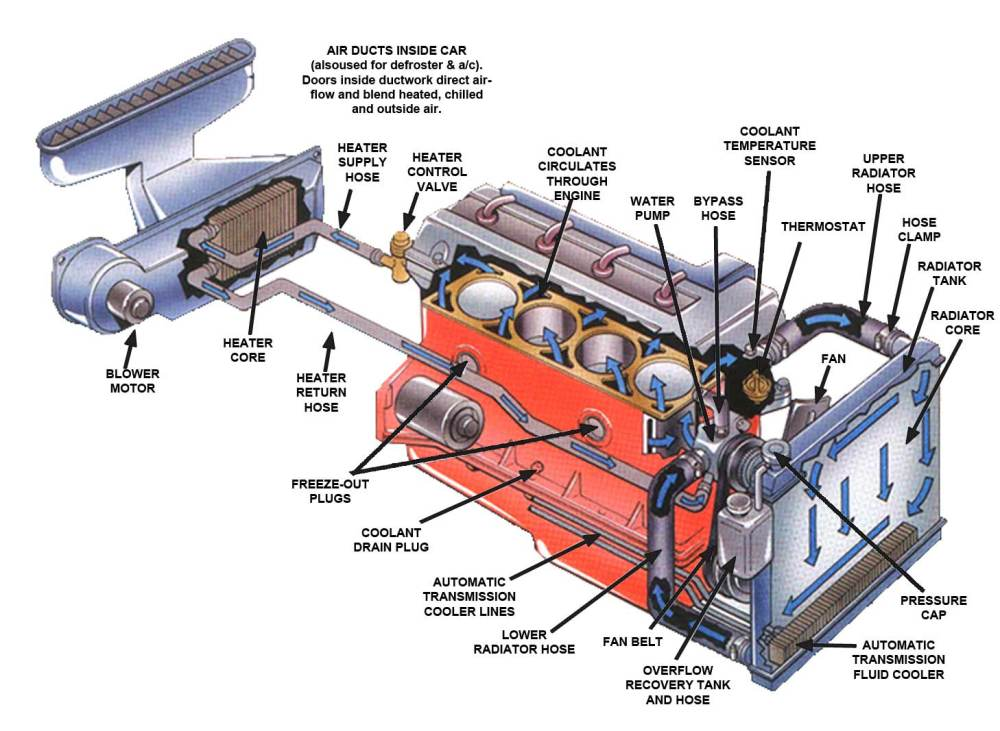 medium resolution of radiator fan repair and replacement in houston lucas auto care car engine diagram