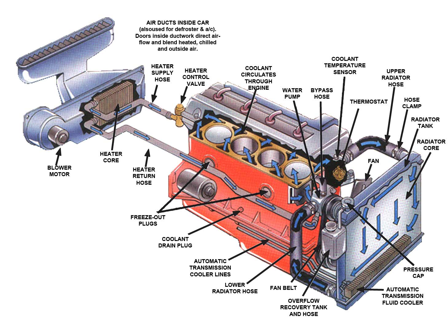 hight resolution of radiator fan repair and replacement in houston lucas auto care car engine diagram