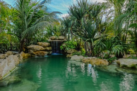 Tropical landscaping at a natural lagoon