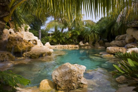 Tropical landscaping at a natural lagoon