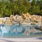Lucas Lagoons Custom Pool pricing caribbean cove 1500-2000 sq ft 600-800k