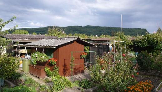 Familiengartenhaus im Landauer (Riehen)