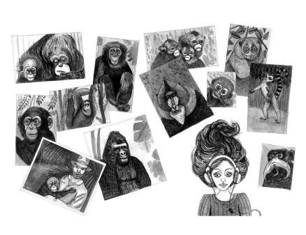 Portraits de primates dans la chambre d'Elizabeth