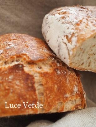 シンプルな小麦パン