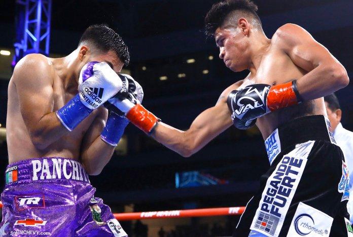 Regresa el box a México