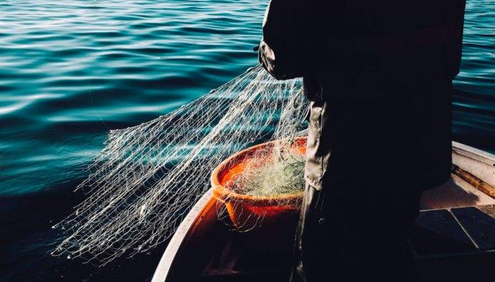 Incluyen 39 especies en mapa de pesca sostenible
