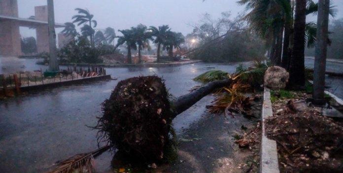 La otra plaga: los huracanes