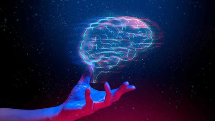 Ayudarán a docentes con Neuroeducación