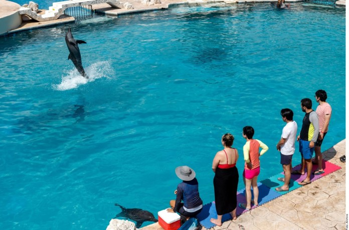 Prevén parques acuáticos 50% de ocupación en Semana Santa