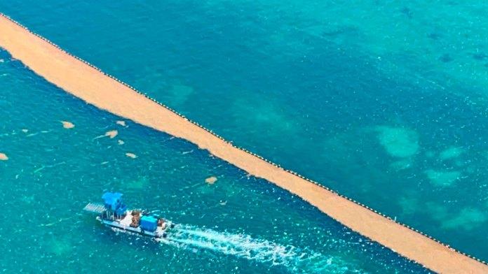 Recolecta Marina 10 mil 462 toneladas de sargazo en QR