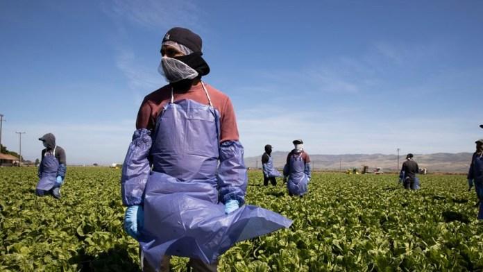 Abren en Capitolio vía para legalizar migrantes