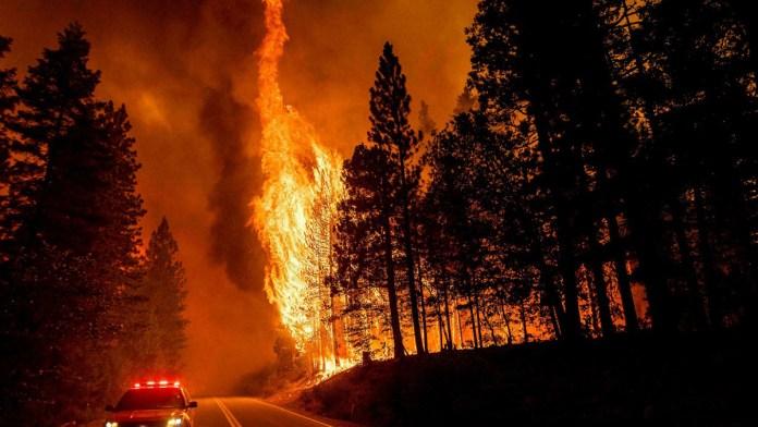Incendios de verano alcanzaron récord de CO2