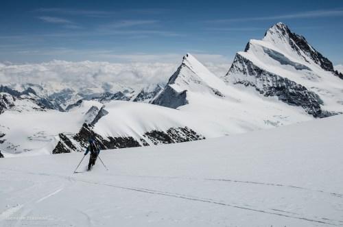Keni sobre nieve en perfectas condiciones a cuatro mil metros. Atrás el Finsteraarhorn (4273m)