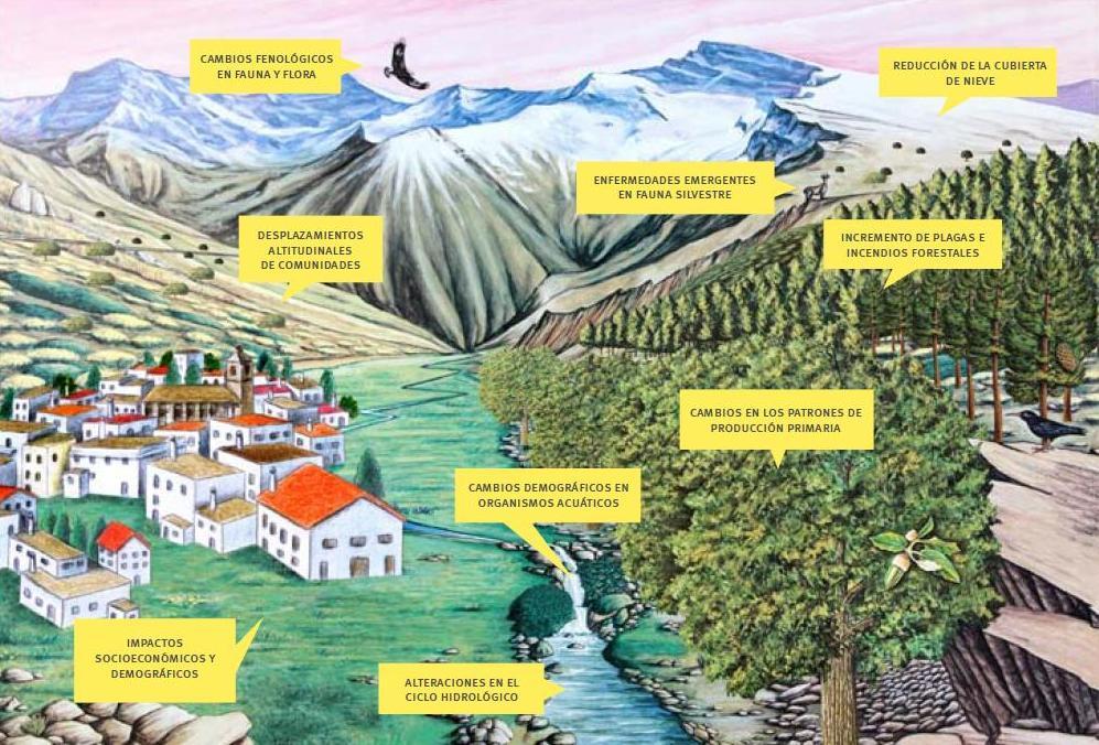 Hipótesis de los impactos del cambio global en Sierra Nevada