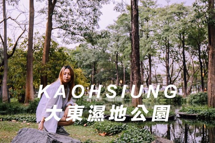 高雄景點推薦【高雄・鳳山區】大東文化藝術中心與大東濕地公園,散步在城市的藝術作品和忘憂森林。