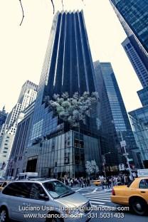 Luciano Usai - New York - img_1141-1