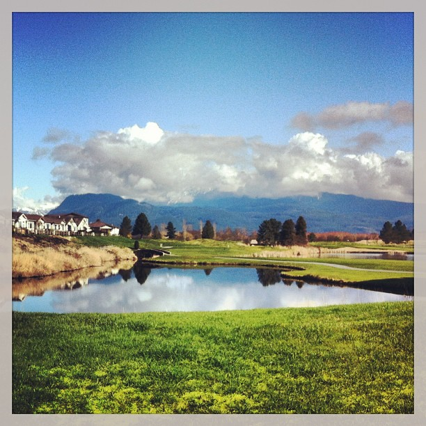 Pitt Meadows community across the golf course