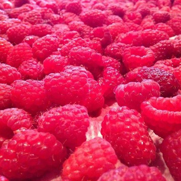 A sea of raspberry